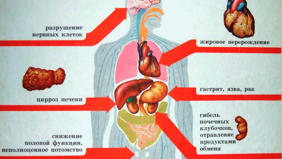 Алматы больница скорой неотложной помощи
